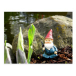 Gnome Pond Postcards
