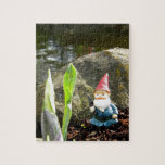 Gnome Pond Puzzle