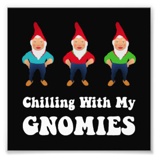 Gnomies Photo Print