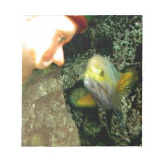 Gnomo de la cara de los pescados blocs