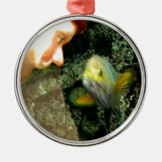 Gnomo de la cara de los pescados adorno redondo plateado