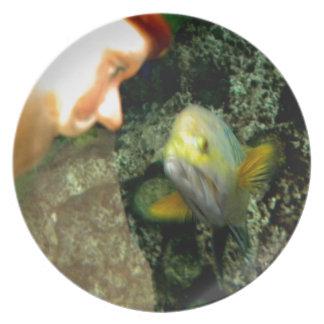 Gnomo de la cara de los pescados plato de comida