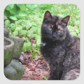 Gnomo del jardín y gatito negro y anaranjado calcomanías cuadradas