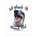 Gnomo feliz del perro usted postales