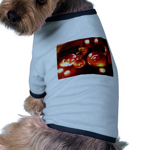 Gnomo I del remiendo de la calabaza Ropa Para Mascota