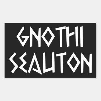 gnothi seauton recognize you rectangular sticker