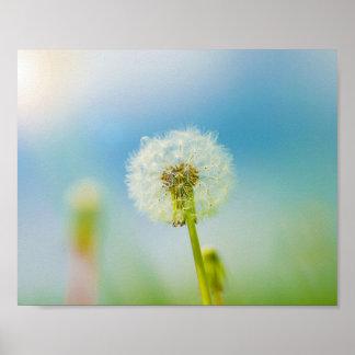 Go Ahead Make a Wish - Dandelion Print