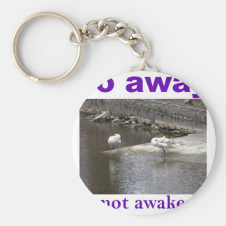 Go away I'm not awake yet Keychain