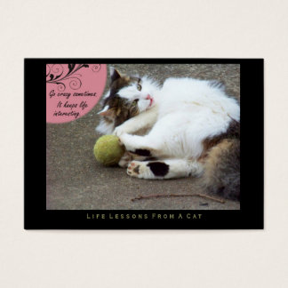 Go Crazy Life Lessons from a Cat ACEO Art Cards