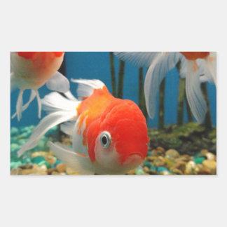 Go Fish Rectangular Sticker