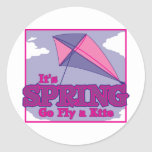 Go Fly A Kite! Classic Round Sticker