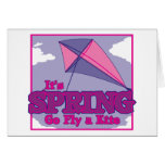 Go Fly A Kite! Greeting Cards
