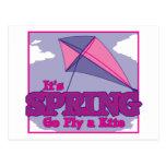 Go Fly A Kite! Postcard