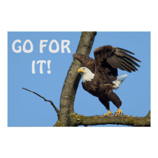 Go For It! Poster