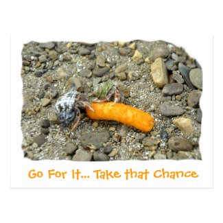 Go For It... Take that Chance Postcard