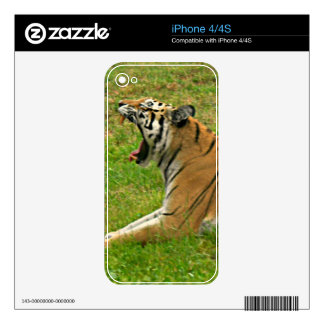 Go Get 'Em Tiger! Decals For The iPhone 4S