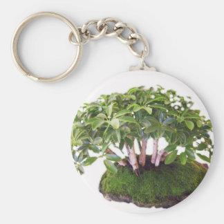 go green bonsai tree designs keychain