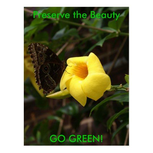 GO GREEN! Butterfly on Yellow Flower Postcard