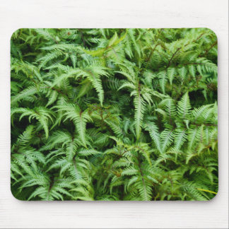 """""""Go Green"""" Fern Print Save the Planet Mousepad"""