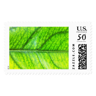 Go Green Nature Postage