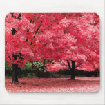 Go Green - or Pink Mouse Pads