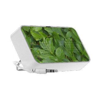 go green mini speakers
