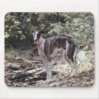 Go Greyhound Mouse Pad