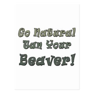 Go Natural Tan Your Beaver Postcard