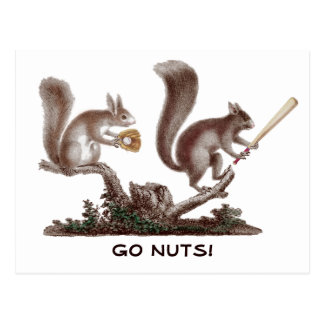 Go Nuts Rally Squirrel Greetings from St. Louis! Postcard