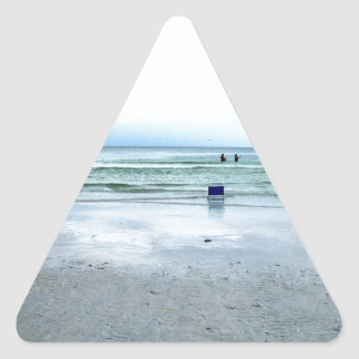 Go Out Wading In The Water! Triangle Sticker