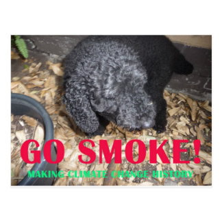 GO SMOKE POSTCARDS