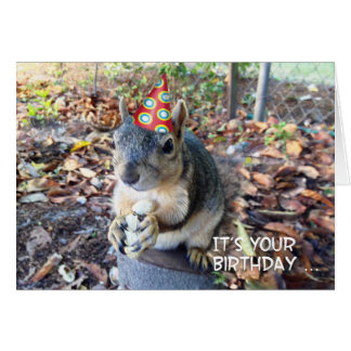 Go Wild on Your Birthday Cute Party Hat Squirrel Card