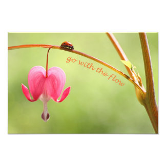 Go With the Flow Ladybug and Flower Art Photo