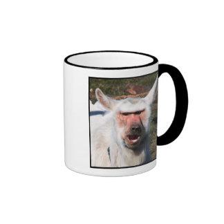 Goaboon mug
