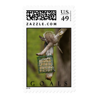 GOALS Inspirational Funny Squirrel Postage Stamps