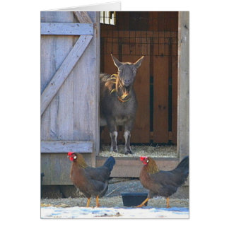 Goat and Chicken Farmyard Note Card