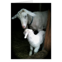 Goat and kid Mother's Day card