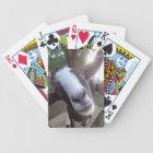 Goat Barnyard Farm Animal Bicycle Playing Cards