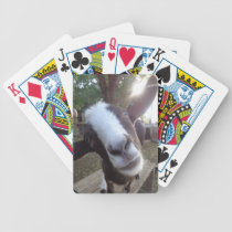 Goat Barnyard Farm Animal Bicycle Playing Cards