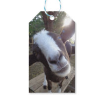 Goat Barnyard Farm Animal Gift Tags