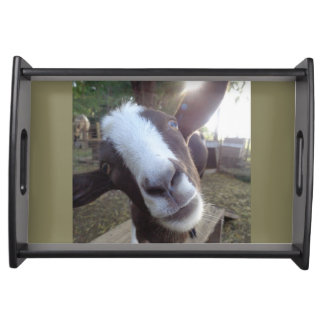 Goat Barnyard Farm Animal Serving Tray