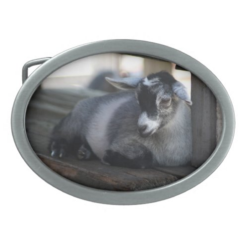 Goat Belt Buckle