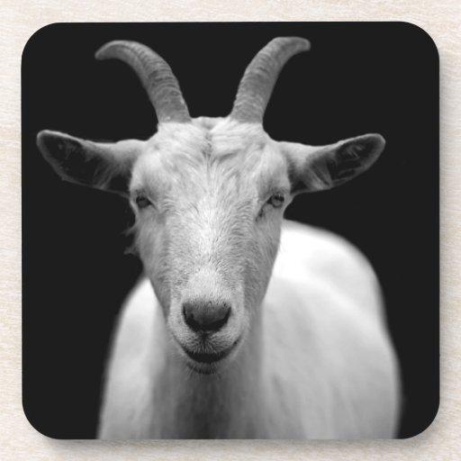 Goat Beverage Coaster