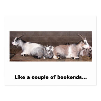 Goat Bookends Postcard