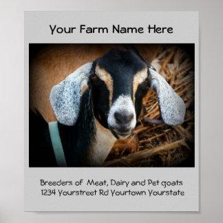 Goat Breeder Business Advertisement Poster