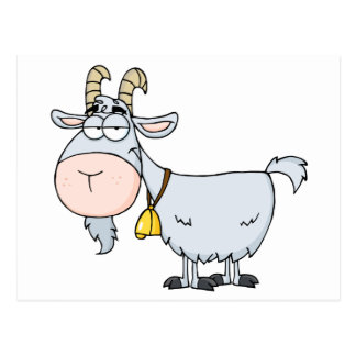Goat Cartoon Character Postcard