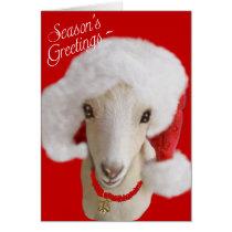 Goat Christmas Card LaMancha Goat
