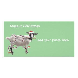 Goat Christmas Customized Photo Card