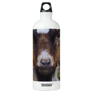 Goat close up. aluminum water bottle
