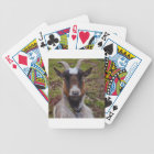 Goat close up. bicycle playing cards